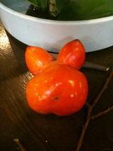 動物の顔柿
