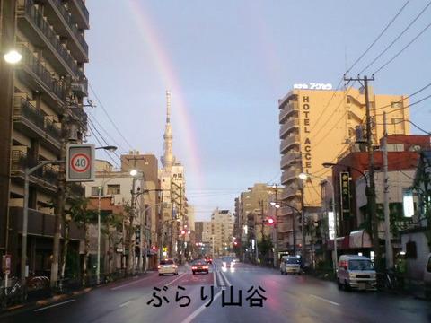 スカイツリーと虹
