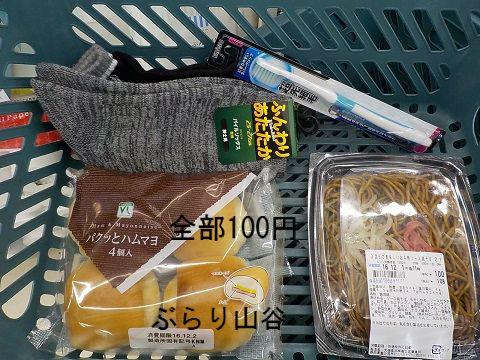 100円商品ばかりを購入する