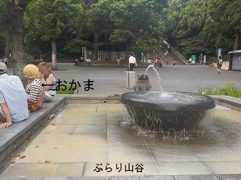 上野公園でおかま