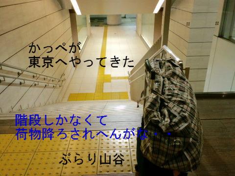 かっぺが東京へ