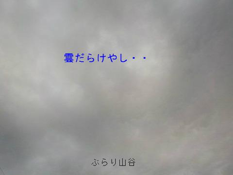 予報は晴れでも雲だらけ
