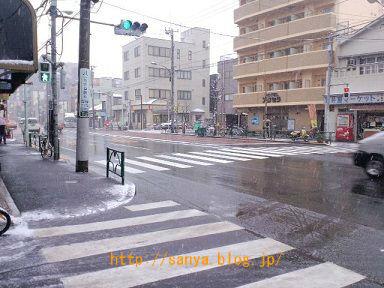 東京で雪が降った