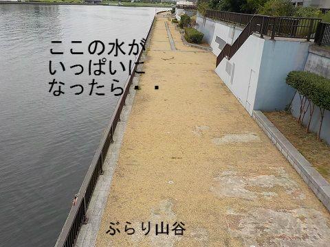 台風で隅田川が氾濫したら