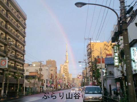 スカイツリーに虹がかかり綺麗