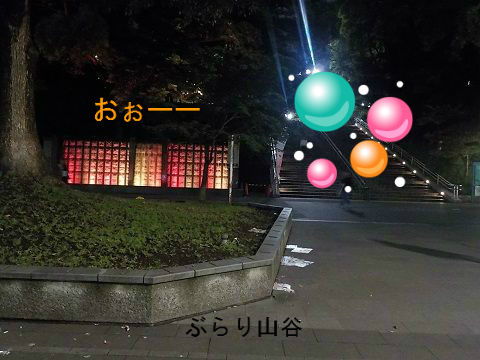 夜の上野公園が綺麗