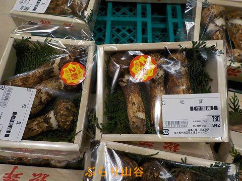 2016年松茸