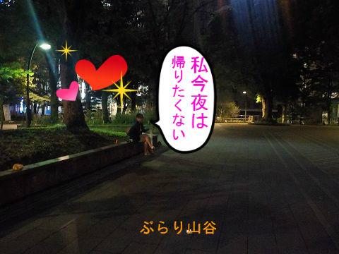 夜の上野公園にデートするカップル