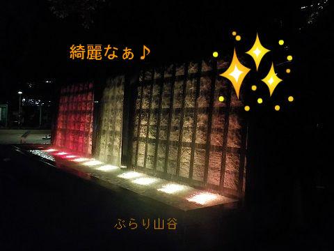 夜の上野公園のライトアップされた滝