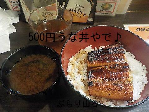 上野宇奈とと500円うな丼