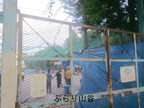 玉姫公園夏祭り