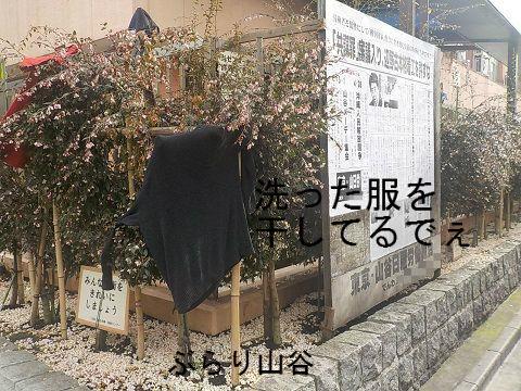 山谷労働福祉センター建物の柵で洗濯ものを干している