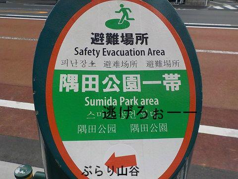 墨田公園避難場所