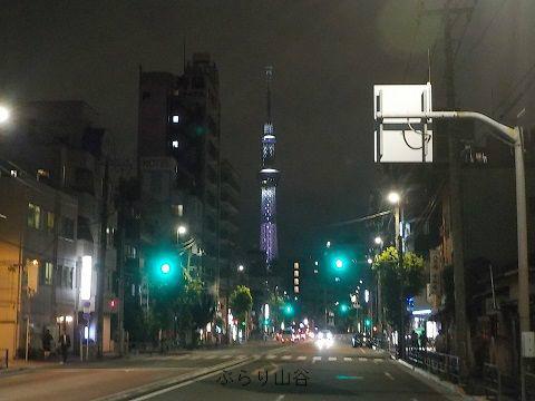 ドヤ街から見える夜のスカイツリー
