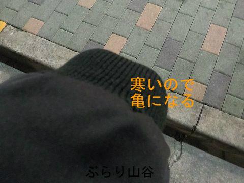 寒いのでジャンパーの袖の中に手を引っ込める