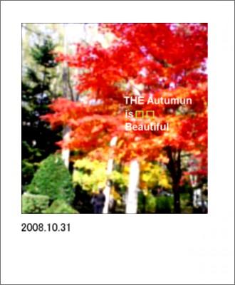 秋ですねー