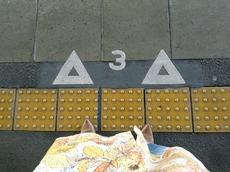 6e36a774.jpg