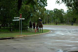 子供は馬で遊ぶ?