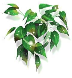 0_0_0_0_0_0_0_clip_greenmoon