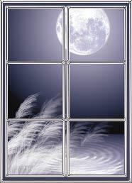 window-susuki1