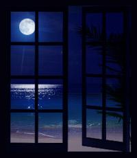 window05