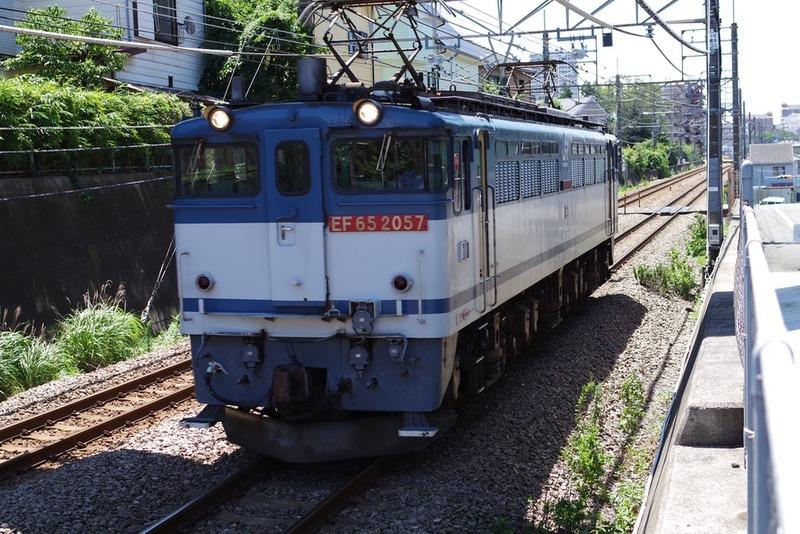 IMGP1910