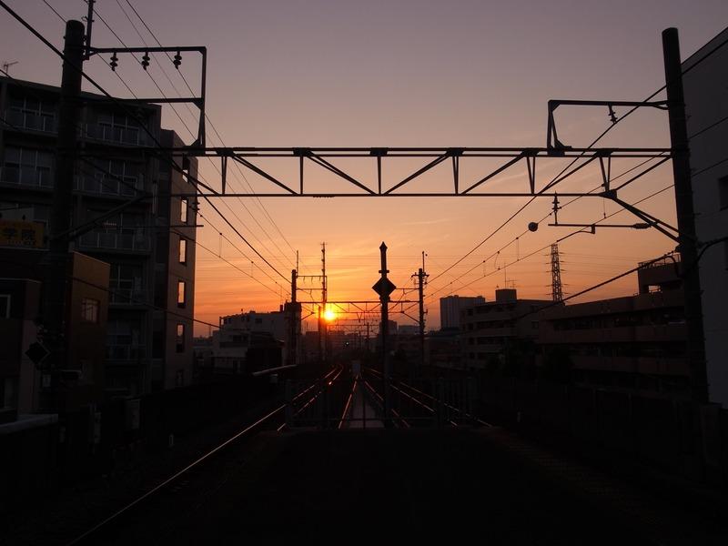 IMG_8705