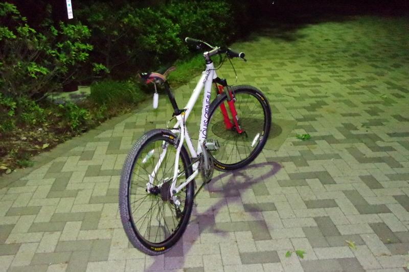 IMGP3516