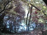 070901滝の宮から綾川
