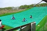芝の滑り台
