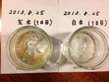 20130825玄・白