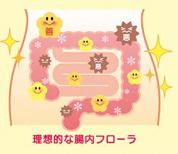 腸内環境�