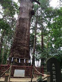 麻賀多神社�