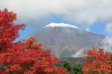 富士山・紅葉