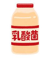 乳酸菌飲料�