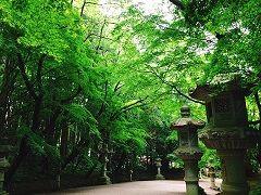 香取神宮�
