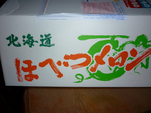 北海道メロン1