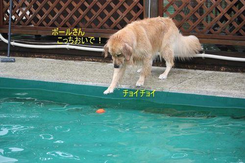 6月26日水遊び?