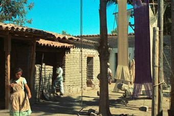 Oaxaca685411