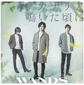 wandsca2