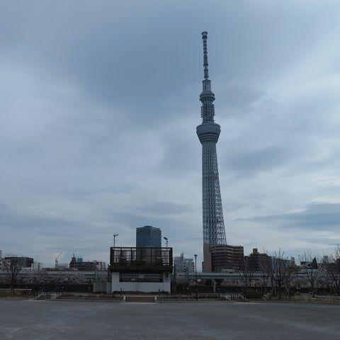 浅草吉原202003(11)
