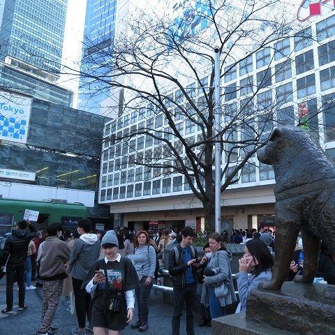 渋谷202003(14)