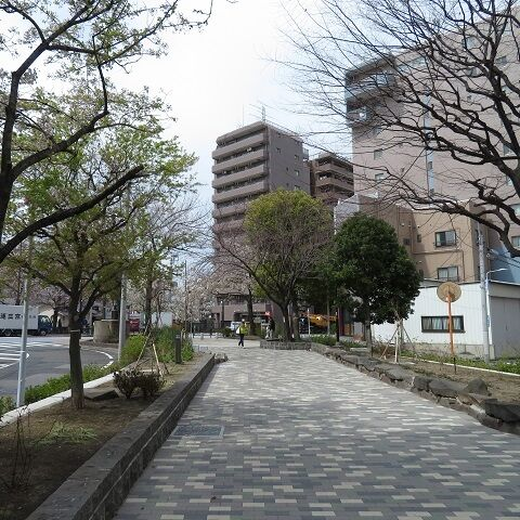 浅草吉原202003(14)