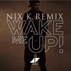 Wake Me Up / Avicii