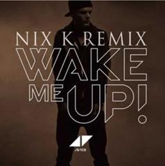 Wake Me Up / Avicii