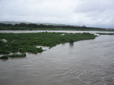 中州も水の中