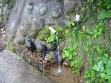 山田のわき水