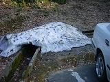 頼成の森の残雪