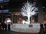 日テレ前のクリスマスイルミネーション