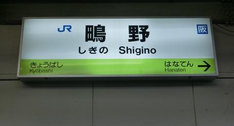 CIMG8919